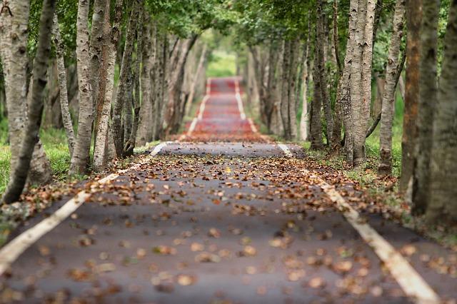 Enclosure Materials, Engineering Blog, Paperless Operation, Save Trees,